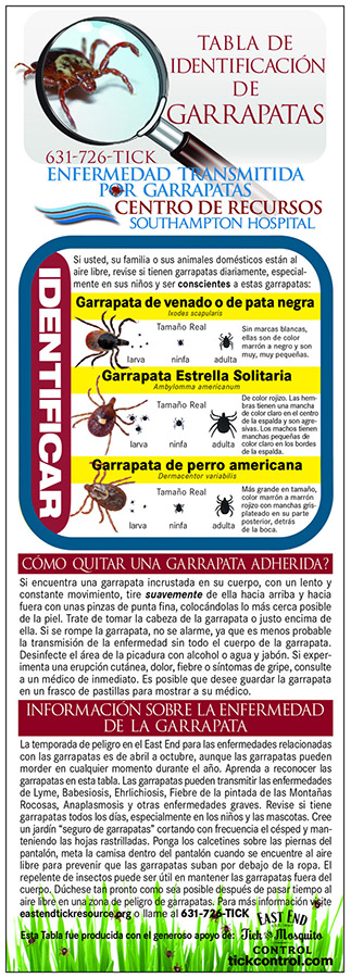 tick id panel spanish